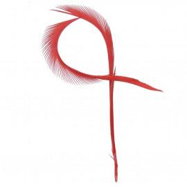 Pluma de Oca Rojo ( 10 uds )