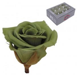 Mini Rosa Ø 3,5 cm Verde Te (12 uds)
