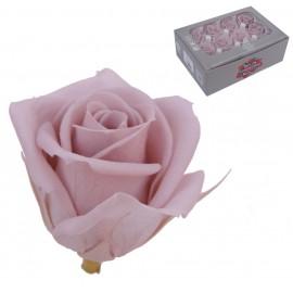 Mini Rosa Ø 3,5 cm Cherry Blossom (12 uds)