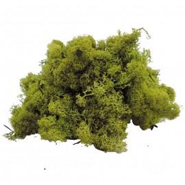 Musgo Filandes Verde Claro 500 gr