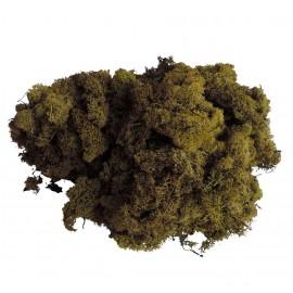 Musgo Filandes Verde 500 gr