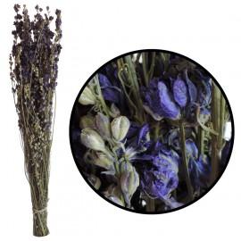Delphinium Azul 100 grs