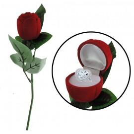 Rosa caja de Anillo Compromiso ↕25cm