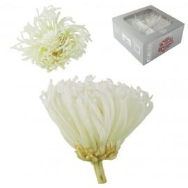 Anastasia Crisantemo Blanca Ø 7 cm (4ud)