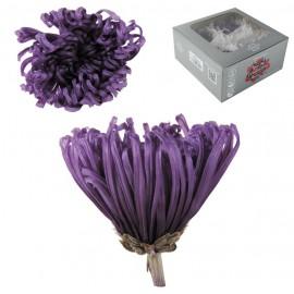 Anastasia Crisantemo Purpura Ø 7 cm (4ud)