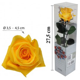 Rosa con Tallo Mini Amarillo ↕27,5 cm
