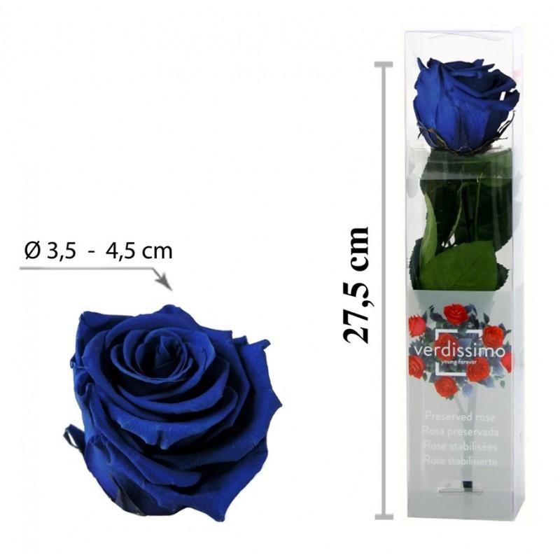 Rosa con Tallo Mini Azul ↕27,5 cm