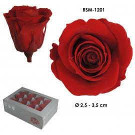 Mini Rosa Ø 3,5 cm Rojo (12 uds)