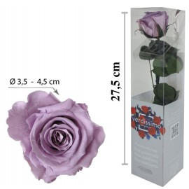 Rosa con Tallo Mini Lila ↕27,5 cm