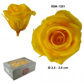 Mini Rosa Ø 3,5 cm Amarillo Osc (12 uds)