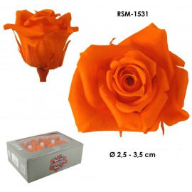 Mini Rosa Ø 3,5 cm Naranja (12 uds)