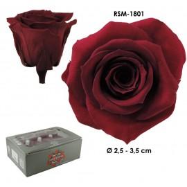 Mini Rosa Ø 3,5 cm Burgundy (12 uds)