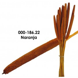Babala Naranja 75cm
