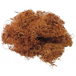 Curly Moss Natural 200 grs