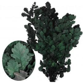 Kercus 80cm Verde