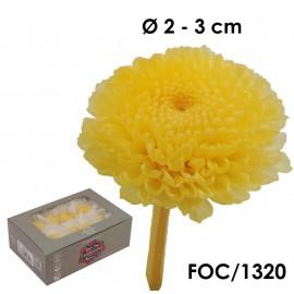 Focus Crisantemo Amarillo (8ud)