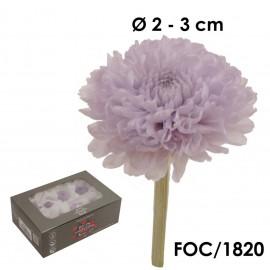 Focus Crisantemo Lila Claro (8ud)