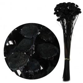 Pali Pala Negro 60 cm