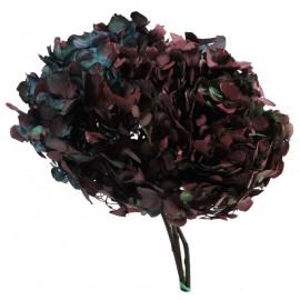 Hortensia Azul / Burgundy Ø 23 cm