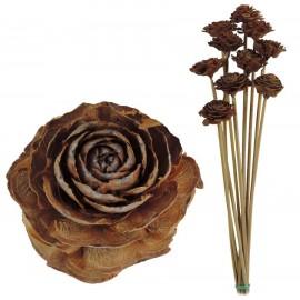 Cedar Rose Marron Natural (10ud)