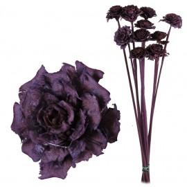 Cedar Rose Lila (10ud)