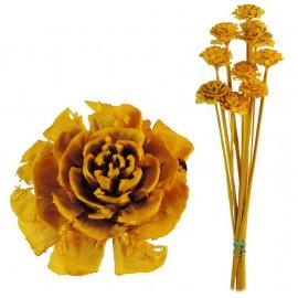Cedar Rose Amarillo (10ud)