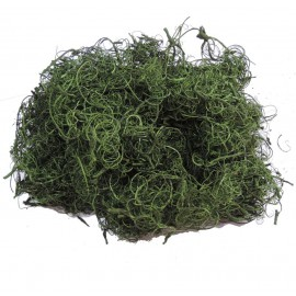 Curly Moss Verde 200 grs
