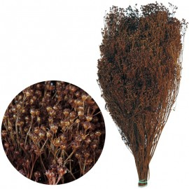 Brooms Marron 200 grs