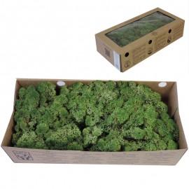 Musgo Verde Reja 500 gr Verd