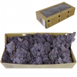 Musgo Violeta 500 gr Verd