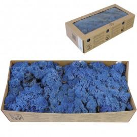 Musgo Azul Oscuro 500 gr Verd