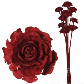 Cedar Rose Rojo (10ud)