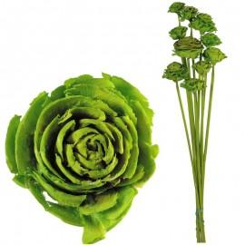 Cedar Rose Verde Lima (10ud)
