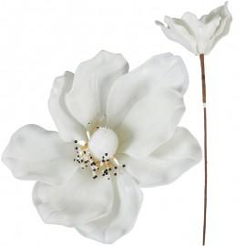 Magnolia Foam 8 Petalos Blanca