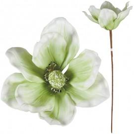 Magnolia Foam 8 Petalos Verde