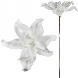 Lilyum Foam 12 Petalos Blanco