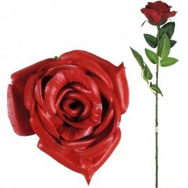 Rosa Abierta Latex 62cm Rojo