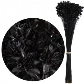 Hill Flower Negro 60 cm