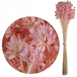 Hill Flower Rosa Claro 60 cm
