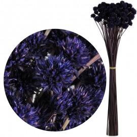 Hill Flower Morado 60 cm