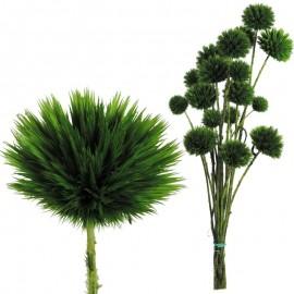 Echinops Pequeño Verde Oscuro