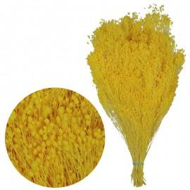 Brooms Amarillo Fuerte 200 grs