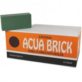 Aquabrick Esponja x20 OASIS