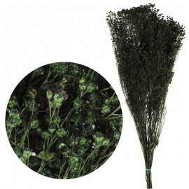 Brooms Verde Oscuro 100 grs