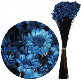 Glixia Azul Electrico 75 gr