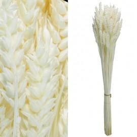 Trigo Flor Blanco 200 grs