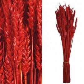 Trigo Flor Rojo 200 grs