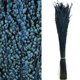 Briza Mini Pres. Azul Turquesa