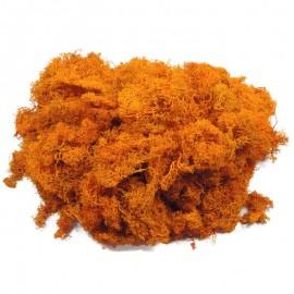 Musgo Finlandes Naranja 500 gr