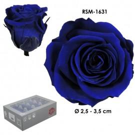 Mini Rosa Ø 3,5 cm Azul (12...
